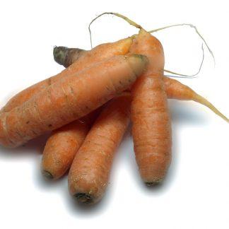 carrotes mora