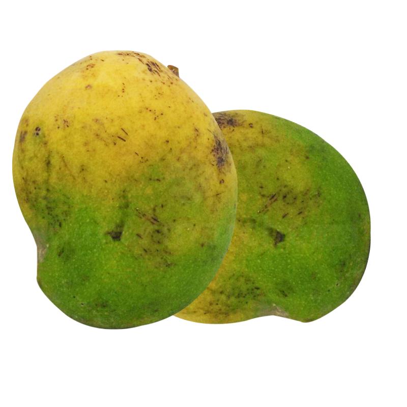 mangue esy