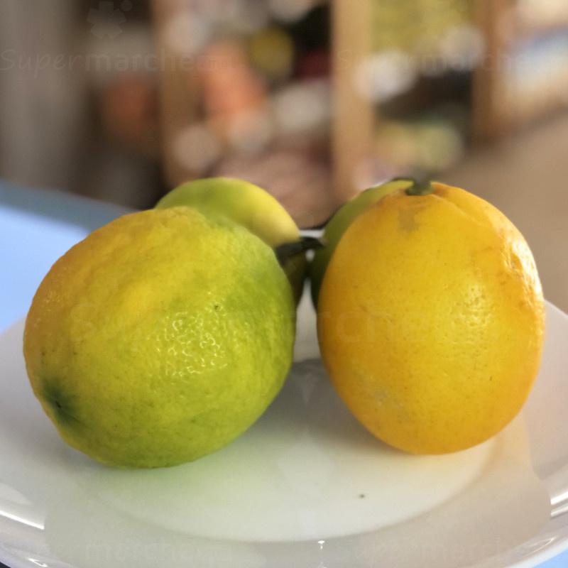 citron meyer jaune assiece